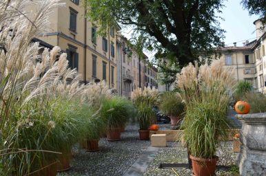 Il giardino di Piazza Mascheroni