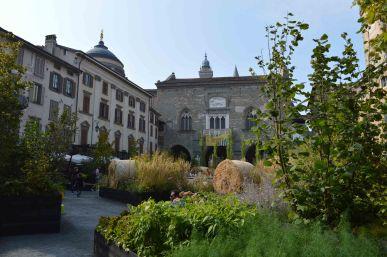 Piazza Vecchia invasa dalla natura
