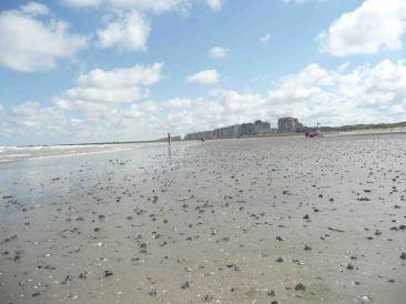 day 6: Il mare del Nord a Oostende, dove la marea regola la giornata