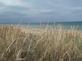 day 11: Utah Beach e le spiagge del DDay... per riflettere sulla II Guerra Mondiale