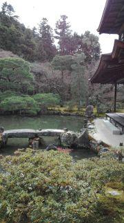 Meravigliosi giardini a Kyoto